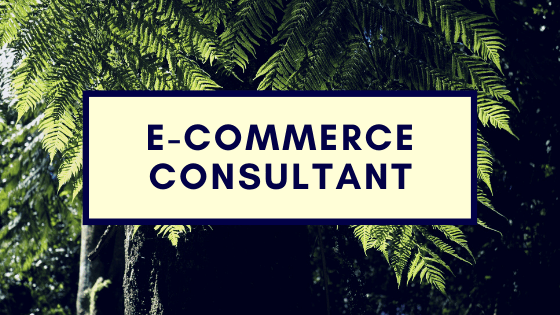E-commerce Consultant