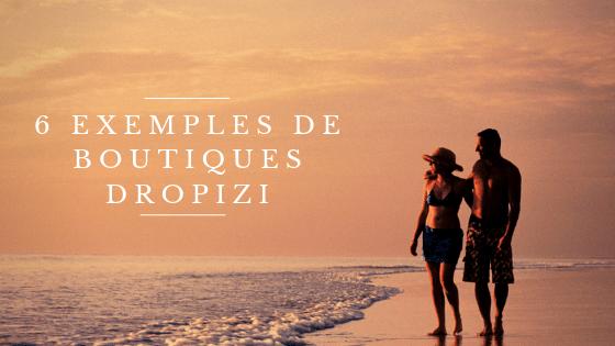 Exemples boutiques Dropizi !